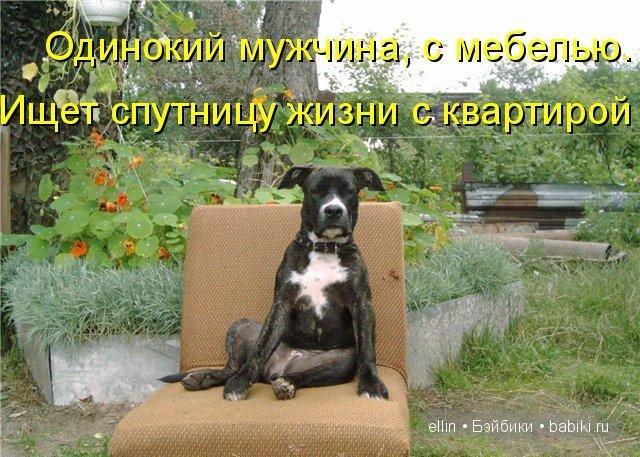 http://babiki.ru/uploads/images/01/18/91/2013/12/23/bf3977.jpg
